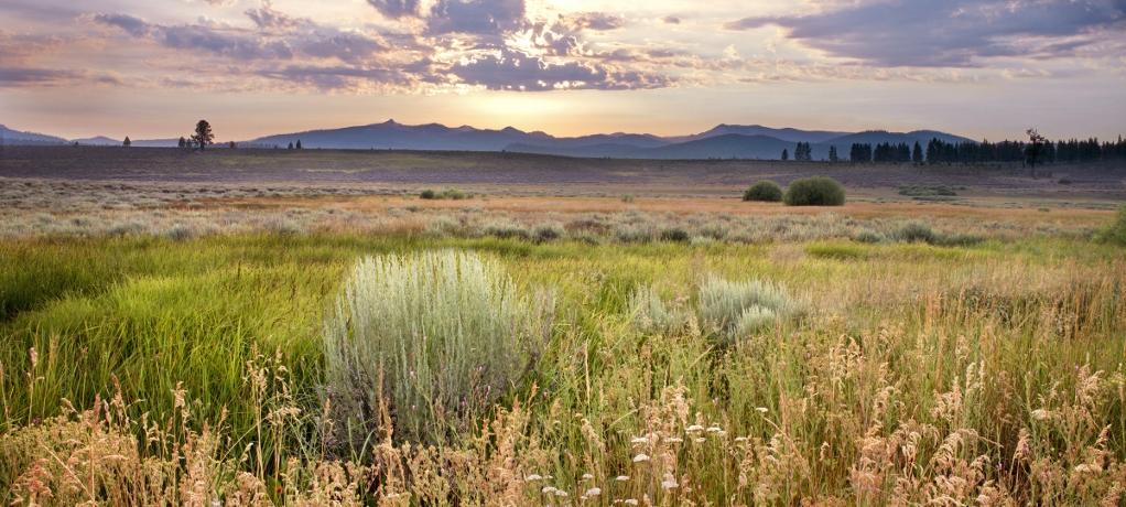 """Landscape Photography by <a href=""""http://www.elizabethcarmel.com/"""" target=""""_blank"""">Elizabeth Carmel</a>"""